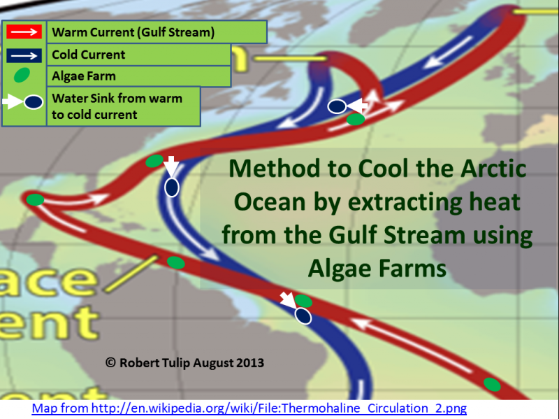 Cool the Arctic Ocean by Extracting Heat from the Gulf Stream Using Algae Farms