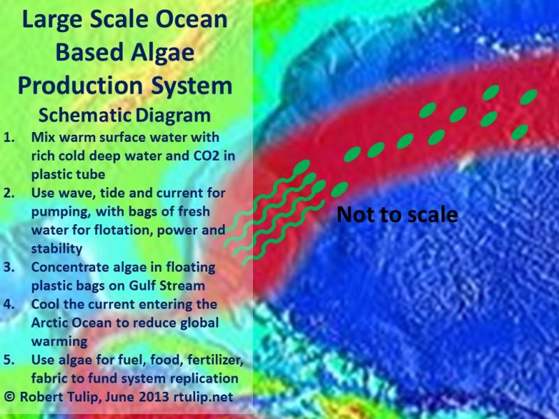 Large Scale Ocean Based Algae Production System Robert Tulip