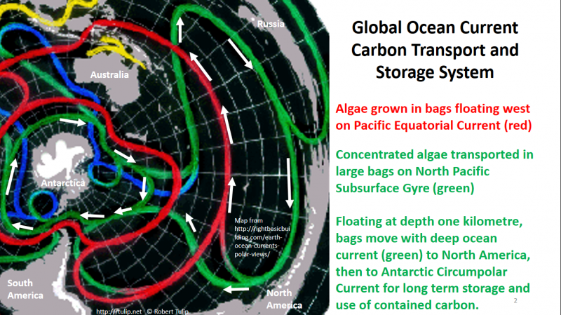 Ocean Current Algae Transport Storage